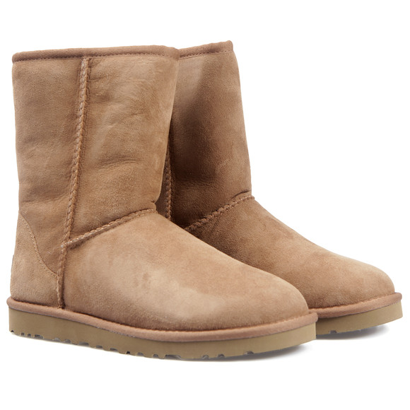 Ugg Womens Brown Classic Short Boot main image