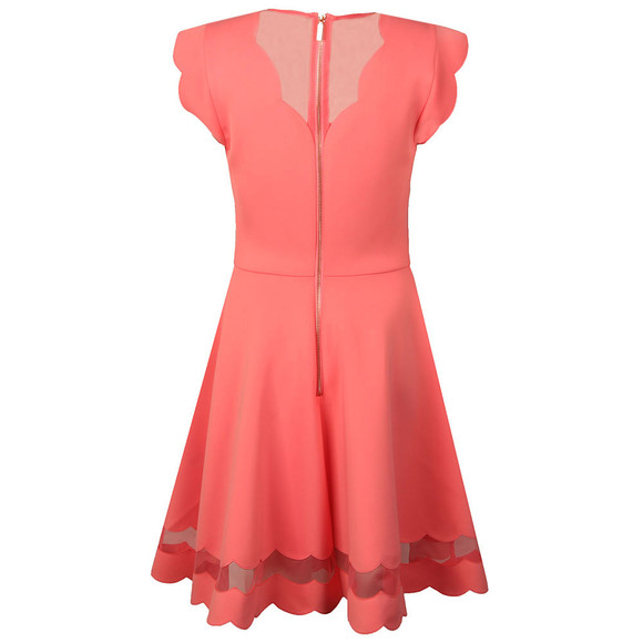 Ted Baker Womens Pink Mesh Paneled Scallop Dress main image