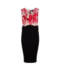 Ted Baker Dega Floral Etchings Cowl Neck Dress
